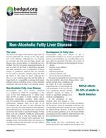 Non-Alcoholic Fatty Liver Disease PDF