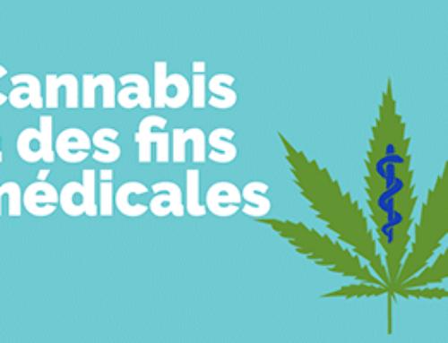 Vidéo : Le cannabis à des fins médicales
