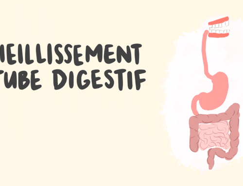 Le vieillissement et le tube digestif : vidéos